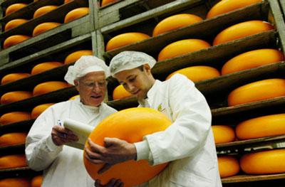 cheesemasters-web[1]